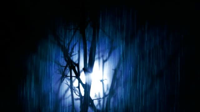 Notte piovosa, albero e luna piena. 2 richiede.