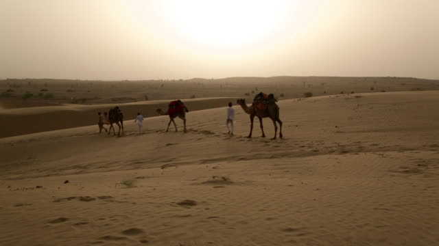 Rajasthani people walking on desert, Sam Desert, Jaisalmer, Rajasthan, India