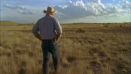 WS POV Rancher walking over to rejoin, cattle herd in background / Marfa, Texas, USA