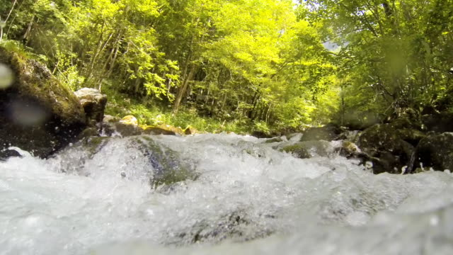 POV Rapid Stream