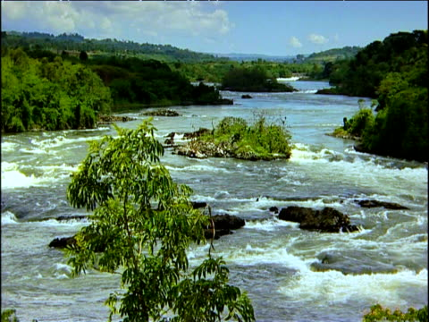 Rapids of 'Rafters Paradise' River Nile Uganda