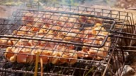 Raw meat, Chicken kebab and bacon on barbecue grill