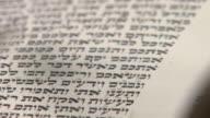 Reading Torah Detail