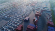Real time A large number of imported cars are parked in the Yangshan Free Trade Port Area