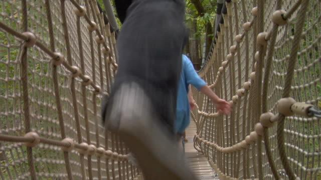 MS Rear view of four children (8-10) running across footbridge suspended between trees / Norwich, Norfolk, United Kingdom