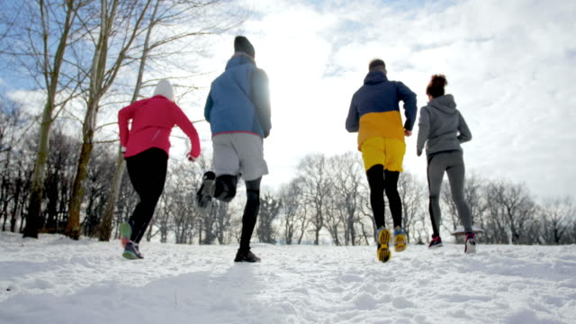 Rear view of group of athletes jogging on a snow in nature.
