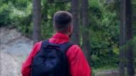 Rückansicht der Wanderer macht seinen Weg im Wald