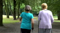 Rear view of senior women walking on dirt road
