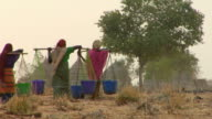 WS, Rear view of three women carrying water towards village, Niamey, Niger