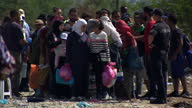 Record numbers of migrants are crossing the border between Macedonia and Greece as they make their journey to northern Europe More than 7600 people...