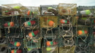Rectangular cages with fishing gear inside