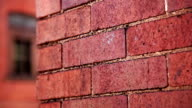 Red brick wall facade and windows architecture background