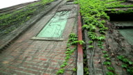 Red bricks old building with green ivy on the walls