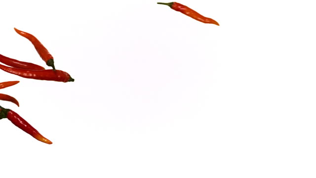 Red Chili Peppers, capsicum annuum falling against With Background, Slow Motion