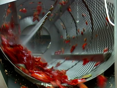 Red pepper on conveyor line