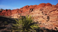Red Rock Canyon National Conservation Area Outside of Las Vegas