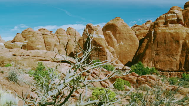 Red sandstone rocks formation in the Fiery furnace section, Arches national park, Utah