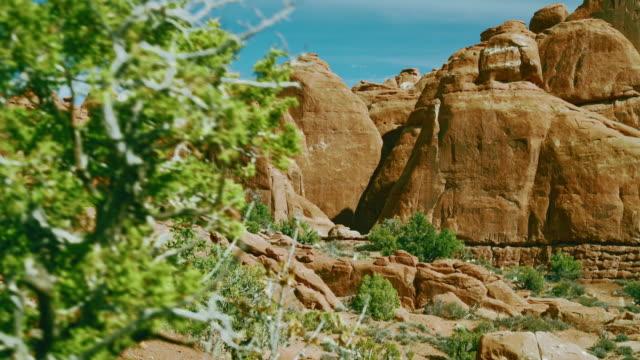 Rode zandsteen rotsen vorming in de sectie van de brandende vuuroven, Arches Nationaal park, Utah