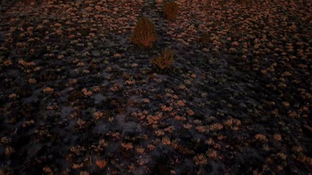 Rode zonsopgang boven de uitgestrekte vlakte in Californië