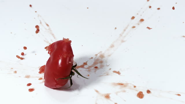 MS SLO MO Red tomato falling and exploding on floor against white background / Vieux Pont, Normandy, France