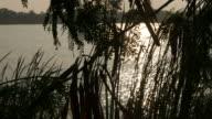 reflection of sunlight  on lake surface