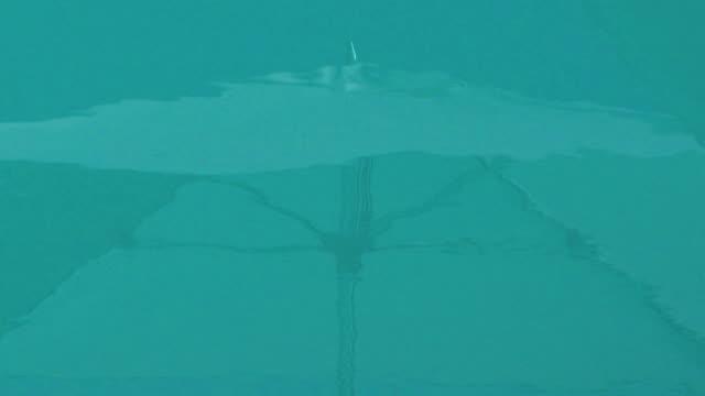 Reflexionen großen Sonnenschirms auf einen pool von Wasser Hintergrund