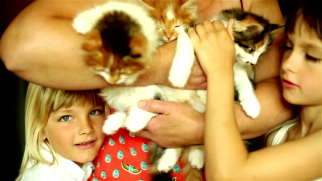 Relaxing family with cats