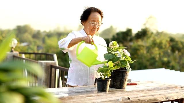 Relaxing senior woman enjoying hobby after retirement