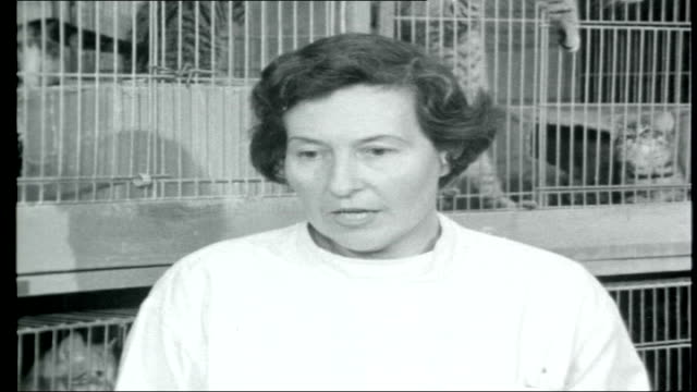 Vivisection East London INT Mrs Marie Camp interview SOT saying she would like to see end of experiments on animals Chring Cross Hospital Female...