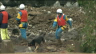 Rescue workers use dogs to hunt for victims of the Chuetsu Earthquake