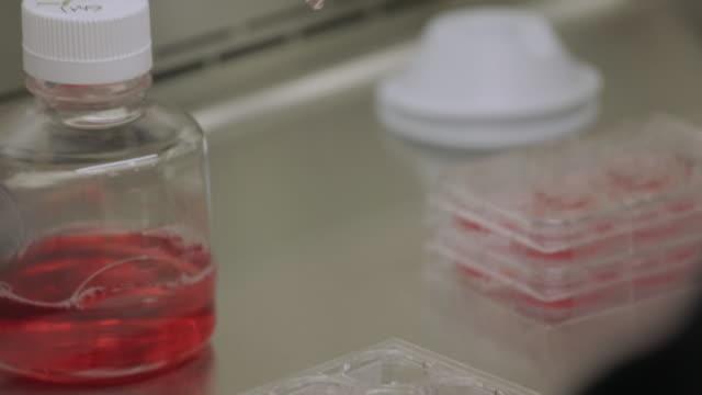 R&D research lab, scientist preps experiment