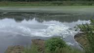 Research shows 5300 farm pollution incidents from 201016 ENGLAND Clarissa Bushell SOT Wide shot stream with waste ZOOM IN Close shot pollution in...