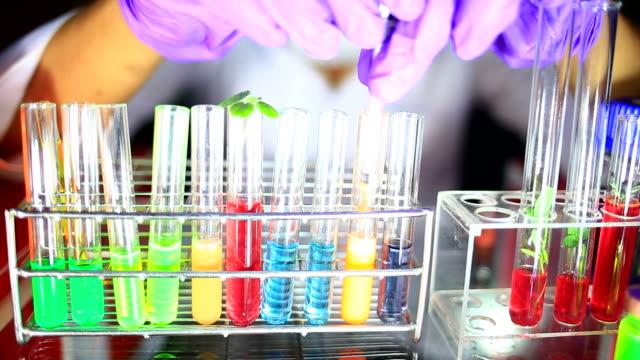 Onderzoeker werken met biochemicaliën in een lab
