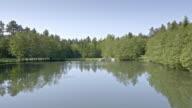 Antenne, offenbart ein See und die Wiese im Sonnenschein