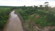 Reverse flyover Amazon River & Rainforest