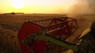 SLO MO Revolving reel of a combine head cutting wheat