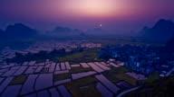 Rice fields at sunrise