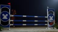 SLO MO Rider on chestnut horse jumping rail at night