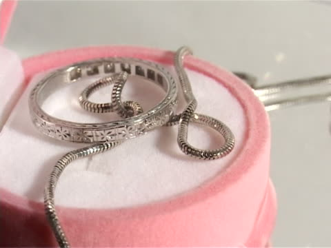 ring and chain in a beautiful case