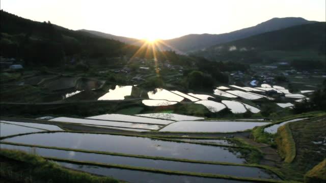 A rising sun casts sunbeams across the Sakaori Rice Terraces in Japan.