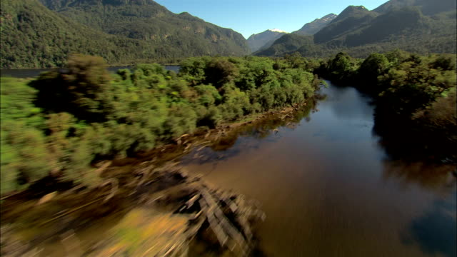 LOW AERIAL, River and forest, Fiordland National Park, New Zealand