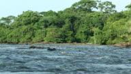 WS River and vegetation, Virunga National Park, National Park, Congo