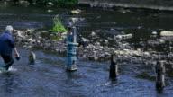 River Artist Dan River Don Sheffield