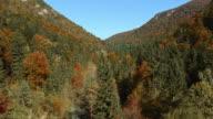Luftbild der Fluss im Herbst Farbige Wald