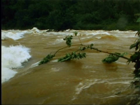 River in spate in Indian rainforest