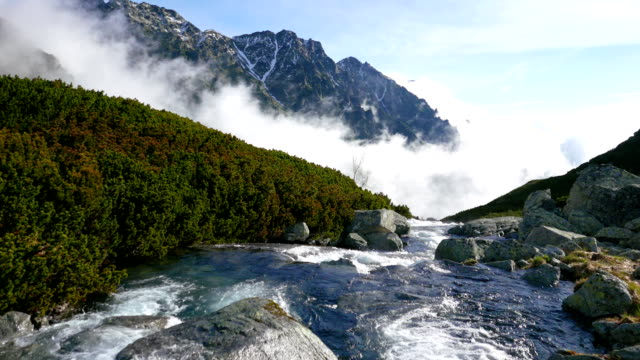 River in the Tatra mountains