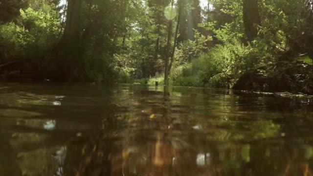 River low angle shot