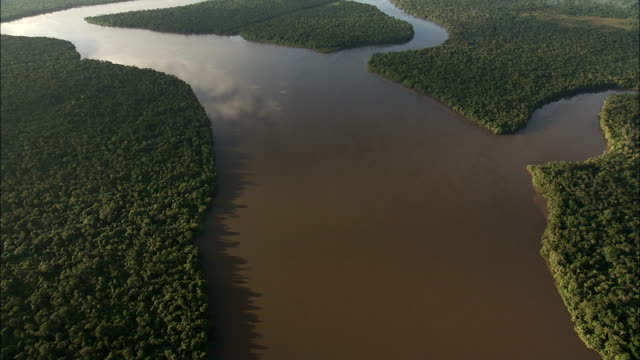 River meets the sea at the edge of the Amazon Rainforest. Available in HD.