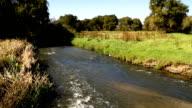 LS river on farm, KwaZulu Natal, South Africa