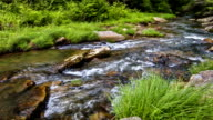 River relaxing nature landscape scenics